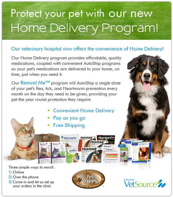 Port City Animal Hospital